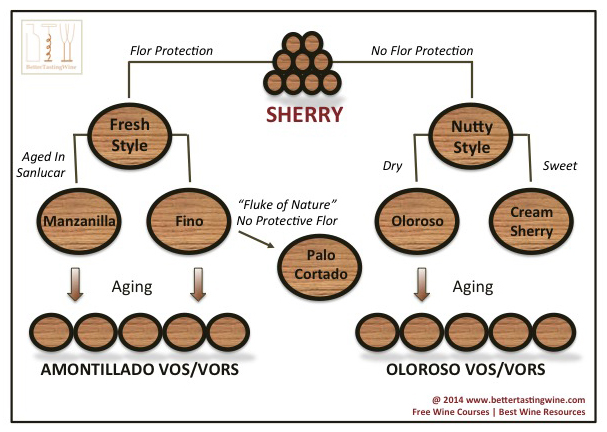 Sherry Basics Guide and Types